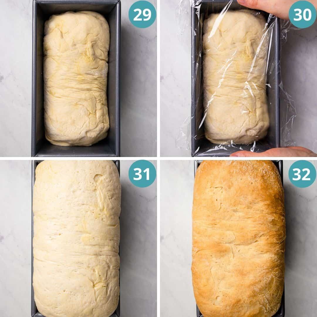Process photos of how to proof bread dough.