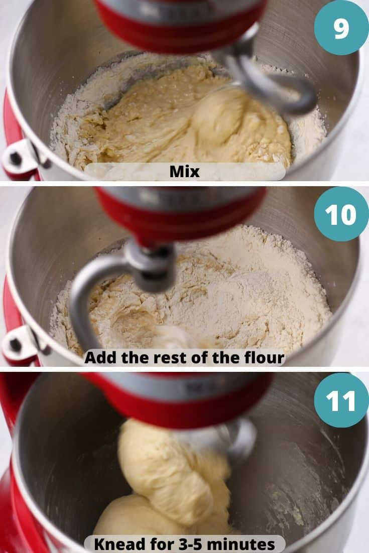 Process hotos of how to make dinner rolls.