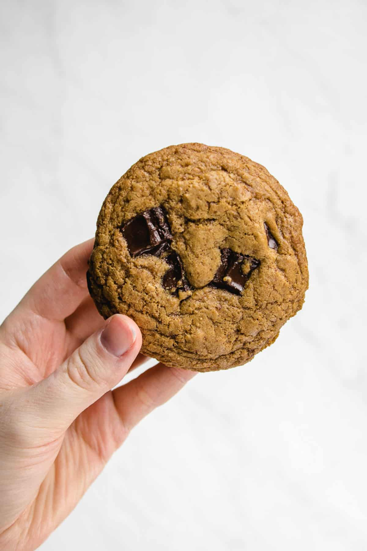 Holding a chocolate chip cookie.